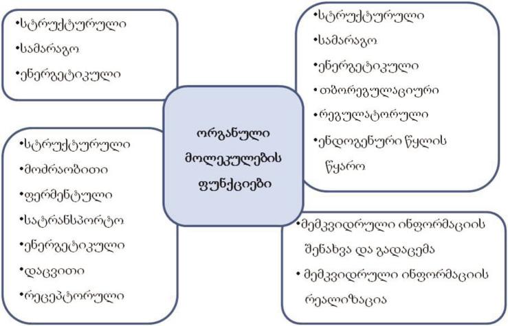 ორგანული ნივთიერებების ფუნქციები